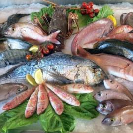 Все, что вы хотели знать о рыбе